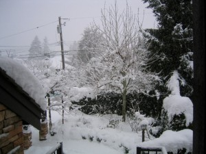 Snow place like West Vancouver !!!
