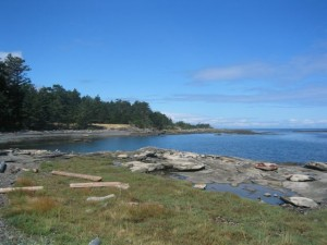 Hornby Island Landscape