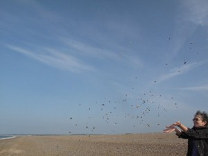 Playing with pebbles and the camera, on England's Norfolk Coast | Reema Faris | © ReemaFaris.com